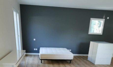 Entreprise de rénovation pour peinture murale à Genas